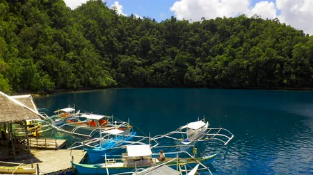 Aerial view Boat pier in a beautiful tropical bay on Sugba lagoon in Siargao, Philippines.