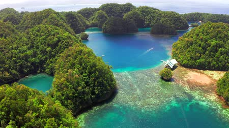 Aerial view of Sugba lagoon. Beautiful landscape with blue sea lagoon, National Park, Siargao Island, Philippines. Стоковые видеозаписи