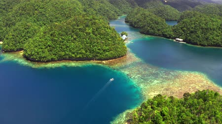 Aerial view of Sugba lagoon. Beautiful landscape with blue sea lagoon, National Park, Siargao Island, Philippines. Wideo