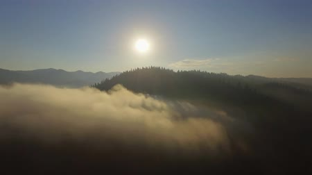 Aerial View. Flying over the beautiful mountain in clouds. Aerial camera shot. Sunrise. Landscape panorama. Wideo