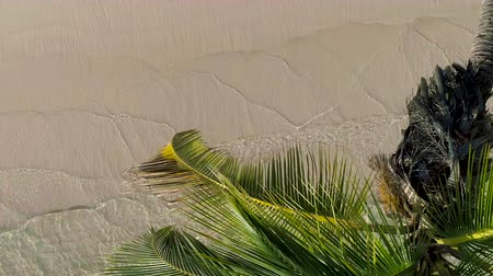 panoramic view : Aerial view of tropical island beach. Coconut palm tree on washing sea waves