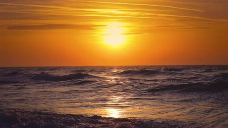 hawaje : Sunrise over the sea waves