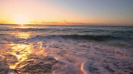 dominican : File name:     Tropical sunrise over the beach. Sea waves washing the sand.