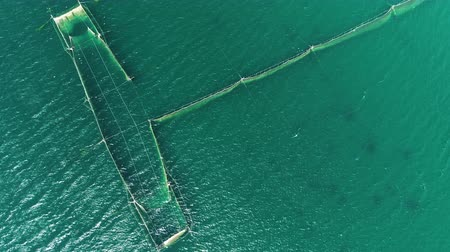 pescador : Fishing Nets in the sea water near the coast of the Black Sea in Varna, Bulgaria, aerial drone view.