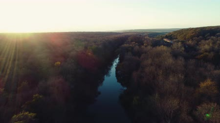 amazonka : Aerial video of River and autumn trees and sailing boat during sunset