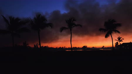 フェアウェイ : Golf course in the tropical island, beautiful sunset with palm trees silhouettes video