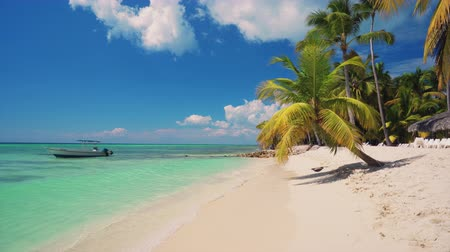 saona : Exotic beach with palms around. Holiday and vacation concept. Tropical island. Stock Footage