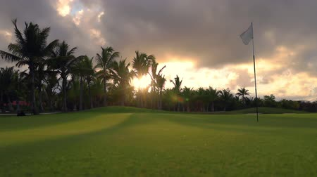 golf clubs : Tropical golf course, palm trees and golden sunset. Dominican Republic, Punta Cana Stock Footage