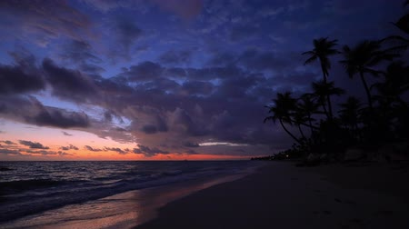 Майорка : Seascape of beautiful tropical beach with palm tree at sunrise. Summer caribbean vacation. Стоковые видеозаписи