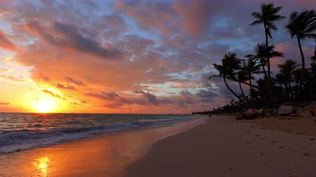 beach panorama : Sunrise, sea, palm trees and tropical island beach Punta Cana, Dominican republic