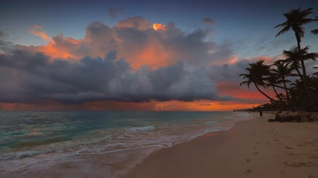barbados : Tropical beach at sunrise. Palm trees and sea.