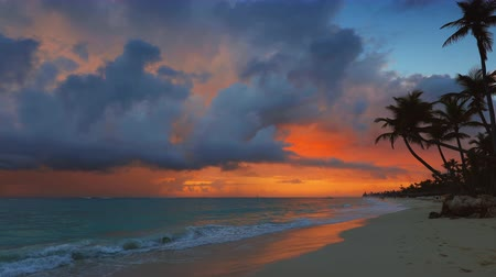 Майорка : Seascape of beautiful tropical beach with palm tree at sunrise. Summer caribbean vacation Стоковые видеозаписи