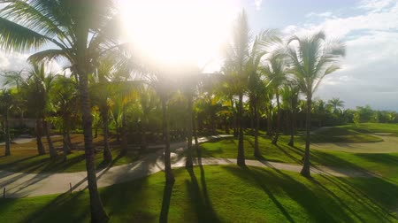 curso : Golf course in luxury tropical resort. Sunset over sport fields, grounds and palm trees