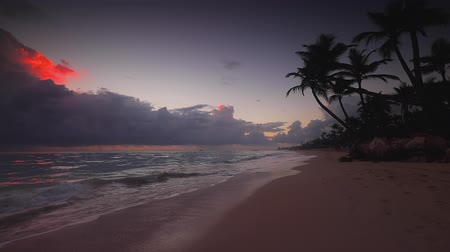 Виргиния : Sunrise sea view and tropical island beach in Punta Cana, Dominican Republic Стоковые видеозаписи