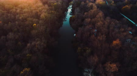 amazonka : Aerial drone sunset view over river and mountain forest. Amazon jungle