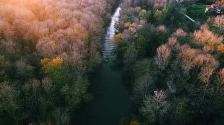 amazonka : Aerial drone sunset view over river and mountain forest. Amazon jungle.
