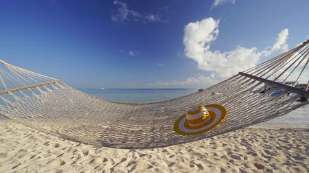 Empty hammock between palm trees on tropical beach by the sea