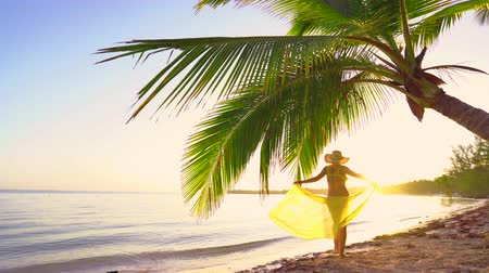 saona : Sunrise over tropical island beach and palm trees. Punta Cana, Dominican Republic. Stock Footage
