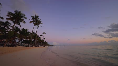nuvens : Sunrise over tropical island beach and palm trees. Punta Cana, Dominican Republic. Vídeos