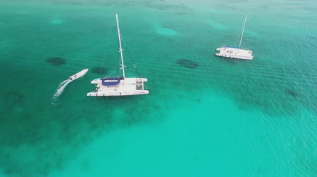 vessels : Sailing catamaran, sailboats and speed boats in the ocean. Aerial view over Caribbean sea.