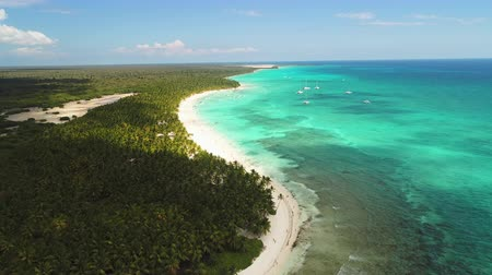 beach panorama : Island Saona in the caribbean sea, Dominican Republic, aerial drone view