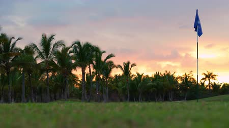 Golf course in luxury tropical resort. Sunset over sport fields, grounds and palm trees