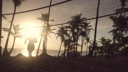 voleybol : Sunrise on tropical beach, friends playing beach volleyball Stok Video