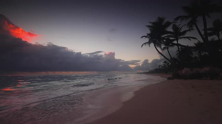 Sea sunrise and tropical beach on caribbean island. Punta Cana