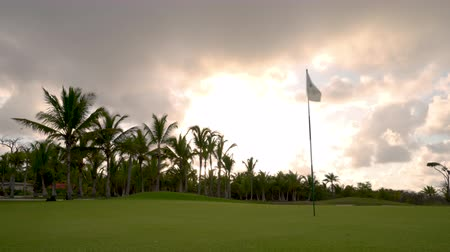 фарватер : Golf course in luxury tropical resort. Sunset over sport fields, grounds and palm trees