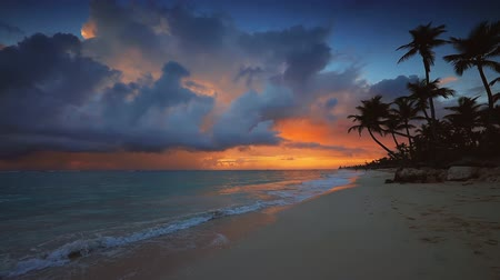 Dramatic sea sunrise over tropical island beach with exotic coconut palm trees