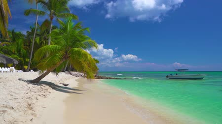 saona : Exotic beach with palm trees on island in the ocean. Lost in paradise concept. Stock Footage