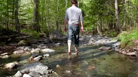 perçin : Man walking in a creek or a small river on a sunny day (Package of 3 scenes, seen from behind and seen from the side with branches in focus) Stok Video
