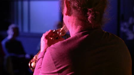 woodwind : Folk musicians perform intimate gig. Close-up footage from behind an alto saxophone instrumentalist as a jazz group perform a live music gig inside a cozy night club. Stock Footage
