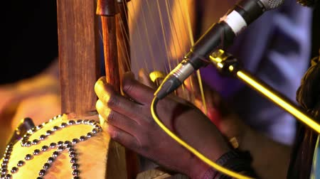 staging : Folk musicians perform intimate gig. Close-up footage of a traditional West African music group using a kora, a stringed harp instrument consisting of 21 string and a hollowed squash. Stock Footage