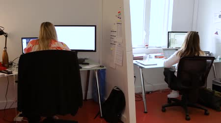 adminisztratív : Professional people working in office. Female employees are seen sitting at workstations using PCs as the camera pans round inside a modern office. Atmosphere during the working day. Stock mozgókép