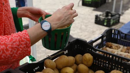 yem : Volunteer work on ecological farm crops. Closeup and slow motion footage of a person filling a small basket with earthy potatoes from a market stall on a local farm as farmer rewards helpers.