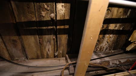 iaq : Indoor damp & air quality (IAQ) testing. Slow motion camera panning footage on the underside of wooden floorboards inside a domestic home, signs of wood decay fungus (lignicolous fungi) and brown rot. Stock Footage