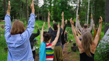 отступление : Diverse people enjoy spiritual gathering A multigenerational group of people are seen from behind with raised arms during mindful posture exercise in woodland, slow-mo footage in nature retreat.