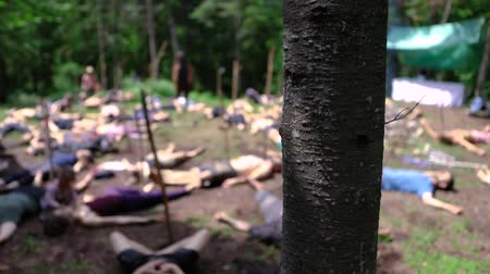 divinity : Diverse people enjoy spiritual gathering Slow motion camera panning of a tree trunk in a woodland campsite, as blurry people are seen laying on the ground during a shaman ritual, seeking enlightenment.