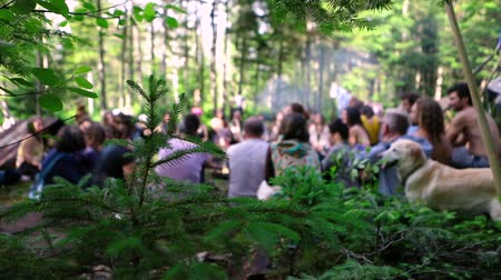 istenség : Diverse people enjoy spiritual gathering Slowed down footage of an intergenerational group of people sitting together during a woodland retreat, blurred in the background with golden retriever dog.