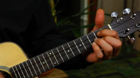flamenco : Panning left of a professional ukulele player with long hair practicing at home Stock Footage