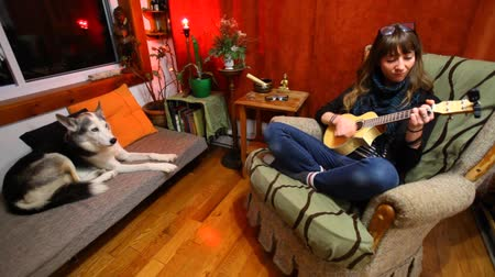 akusztikus : Wide view of young girl learning how to play ukulele sitting in a sofa in her living room with husky dog