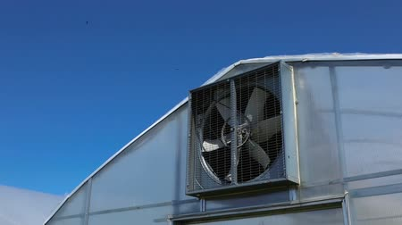 yem : Low angle and slow motion footage of a large industrial fan spinning in the wind against a blue sky, attached to the gable of a greenhouse on a biological farm. Stok Video
