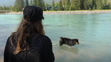 bağlılık : Woman standing on mountain lake shore. She holds a lead as her dog is walking in the shallows in selective focus, seen from the back in slow motion Stok Video