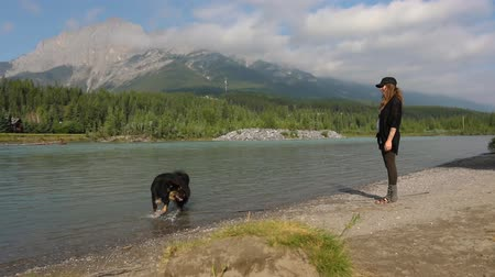 лояльность : A woman stands by a mountain lake. Her dog stands in the shallow water. Both look out to the view. The dog walks up the beach and shakes off the water Стоковые видеозаписи