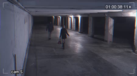 tehdit : robbing a girl in an underpass. Recording from a surveillance camera Stok Video