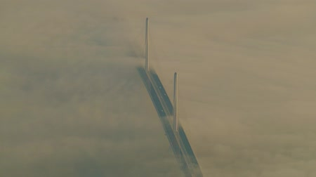 pilon : cable stayed bridge in foggy morning, Shanghai city