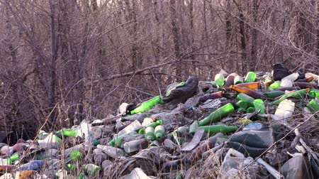 garbage in the forest. ecology of the forest. pollution of nature