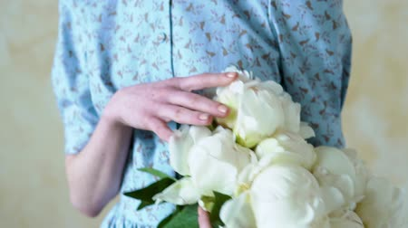 closeup of womens hands holding a bouquet of white peonies Stock Footage