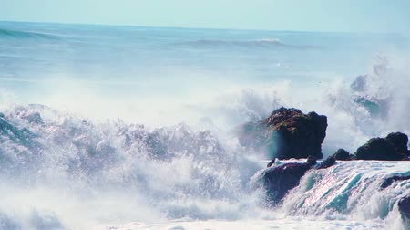 всплеск : Wall of water and turbulent waves of Pacific ocean and rugged beauty of basalt rocks reef and cay cavity